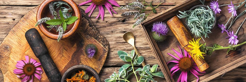 SIGNIFICANCE OF HERBAL PRODUCTS